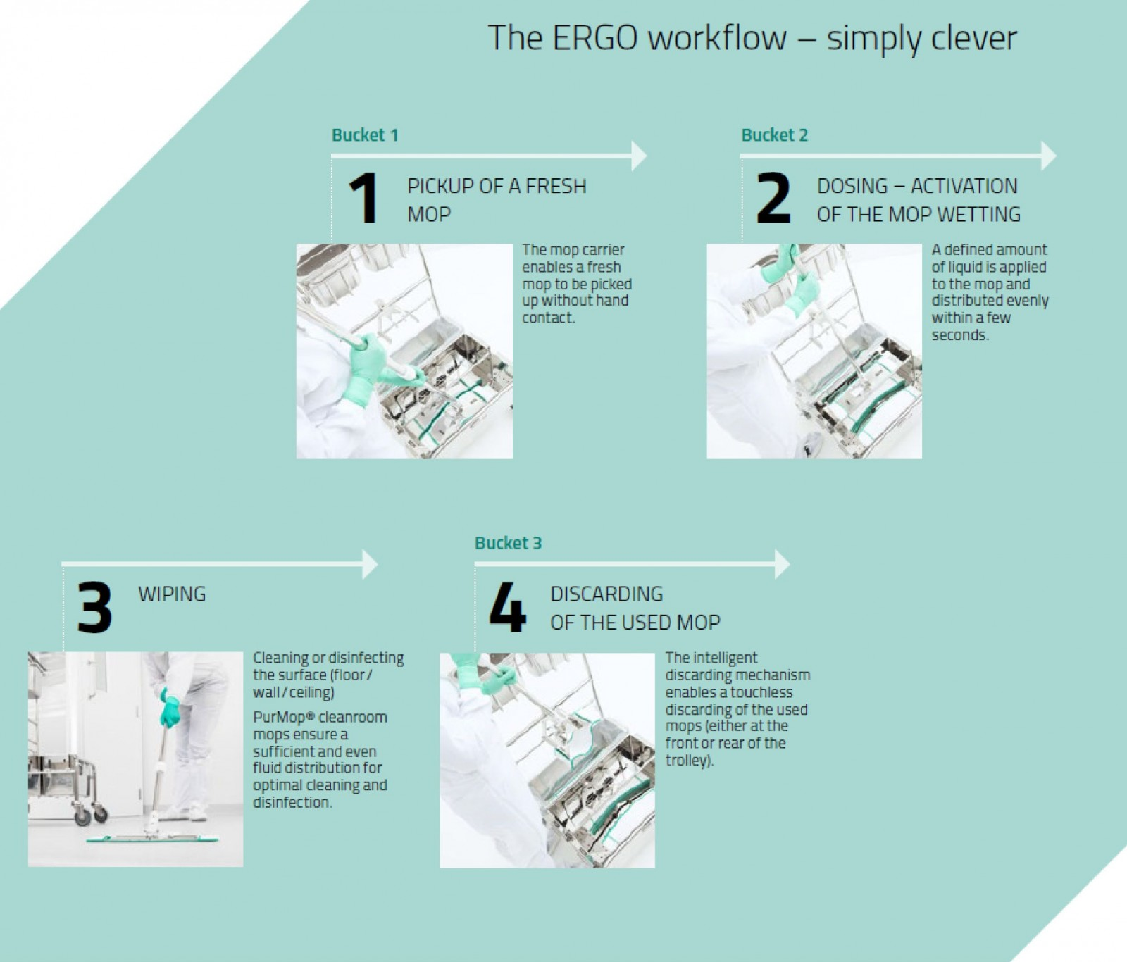 The ERGO workflow
